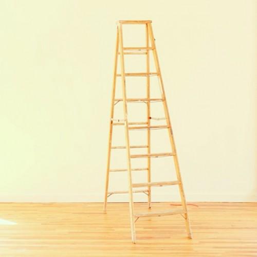 damn ladder